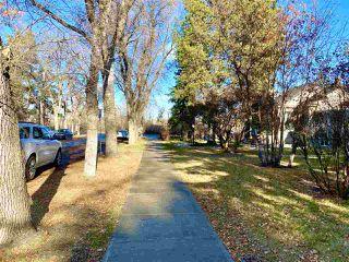 Photo 4: 10931 81 Street in Edmonton: Zone 09 House for sale : MLS®# E4220831