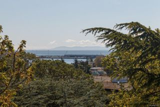 Photo 25: 305 1020 Esquimalt Rd in : Es Old Esquimalt Condo for sale (Esquimalt)  : MLS®# 861597