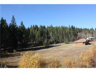 Photo 9: 3943 N 97 Highway in Williams Lake: Williams Lake - Rural North House for sale (Williams Lake (Zone 27))  : MLS®# N205122