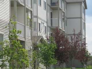Photo 2: 104A 260 Spruce Ridge Road: Spruce Grove Condo for sale : MLS®# E4172781
