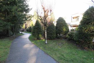 """Photo 18: 306 1500 OSTLER Court in North Vancouver: Indian River Condo for sale in """"MOUNTAIN TERRACE"""" : MLS®# R2426783"""