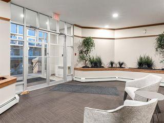 Photo 35: 213 108 EDGERIDGE Terrace NW in Calgary: Edgemont Apartment for sale : MLS®# A1020139