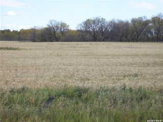 Main Photo: #1 Richardt 143 Acres Corman Park in Corman Park: Farm for sale (Corman Park Rm No. 344)  : MLS®# SK828074