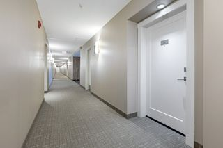 Photo 15: 101 1031 173 Street SW in Edmonton: Zone 56 Condo for sale : MLS®# E4223947