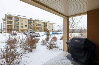 Photo 10: 101 1031 173 Street SW in Edmonton: Zone 56 Condo for sale : MLS®# E4223947