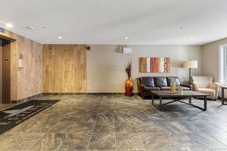 Photo 13: 101 1031 173 Street SW in Edmonton: Zone 56 Condo for sale : MLS®# E4223947
