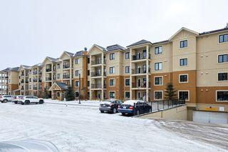 Photo 7: 101 1031 173 Street SW in Edmonton: Zone 56 Condo for sale : MLS®# E4223947