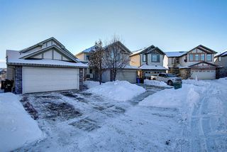 Photo 36: 125 Cranwell Bay SE in Calgary: Cranston Detached for sale : MLS®# A1055540