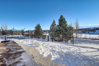 Photo 35: 125 Cranwell Bay SE in Calgary: Cranston Detached for sale : MLS®# A1055540