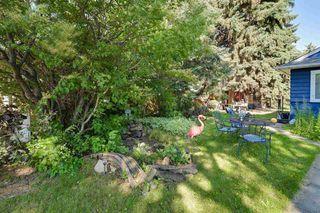 Photo 19: 9906 87 Street in Edmonton: Zone 13 House for sale : MLS®# E4166864