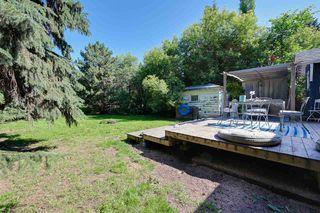 Photo 16: 9906 87 Street in Edmonton: Zone 13 House for sale : MLS®# E4166864