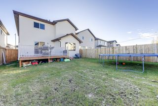 Photo 33: 2857 Maple Way NW in Edmonton: House for sale : MLS®# E4178246