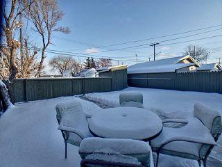 Photo 15: 11613 81 Street in Edmonton: Zone 05 House for sale : MLS®# E4184038