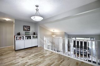 Photo 17: 2115 24 Avenue NE in Calgary: Vista Heights Detached for sale : MLS®# A1018217