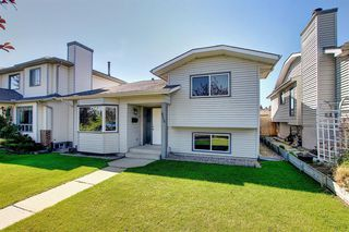 Photo 41: 2115 24 Avenue NE in Calgary: Vista Heights Detached for sale : MLS®# A1018217