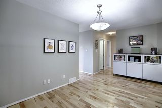 Photo 18: 2115 24 Avenue NE in Calgary: Vista Heights Detached for sale : MLS®# A1018217