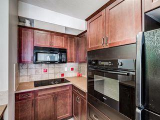 Photo 21: 441 60 Royal Oak Plaza NW in Calgary: Royal Oak Apartment for sale : MLS®# A1038364