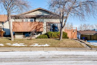 Main Photo: 12 Bermondsey Road NW in Calgary: Beddington Heights Detached for sale : MLS®# A1051586