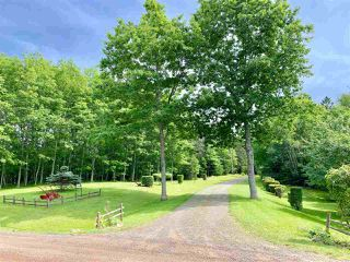 Photo 31: 380 Jim Sutherland Road in Waughs River: 103-Malagash, Wentworth Residential for sale (Northern Region)  : MLS®# 201917538