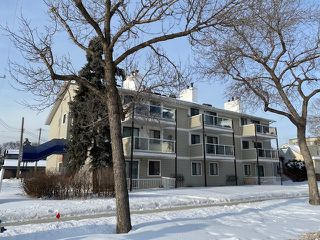 Photo 18: 103 10604 110 Avenue in Edmonton: Zone 08 Condo for sale : MLS®# E4185985