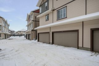 Photo 19: 85 165 CY BECKER Boulevard in Edmonton: Zone 03 Townhouse for sale : MLS®# E4187626