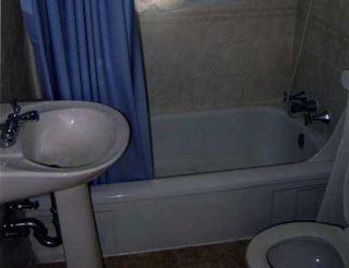 Photo 7: 10740 78 Avenue in Edmonton: Zone 15 House for sale : MLS®# E4187799