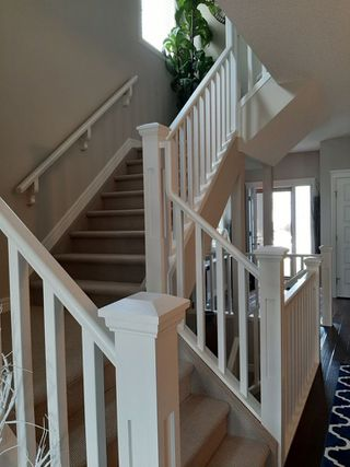 Photo 11: 852 Crystallina Nera Way NW in Edmonton: Zone 28 House for sale : MLS®# E4206319