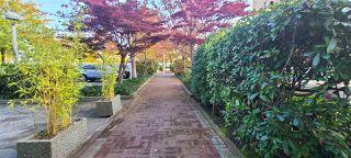 "Photo 24: 204 6631 MINORU Boulevard in Richmond: Brighouse Condo for sale in ""REGENCY PARK TOWERS"" : MLS®# R2490670"
