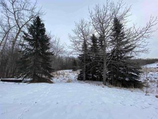Photo 5: 54325 RGE RD 280: Rural Sturgeon County House for sale : MLS®# E4215294