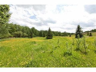 Photo 1: 54325 RGE RD 280: Rural Sturgeon County House for sale : MLS®# E4215294