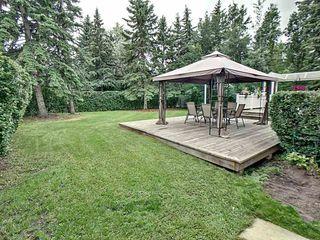 Photo 20: 14107 58 Avenue in Edmonton: Zone 14 House for sale : MLS®# E4165482