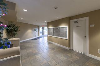 "Photo 5: 114 2515 PARK Drive in Abbotsford: Central Abbotsford Condo for sale in ""VIVA ON PARK"" : MLS®# R2446836"
