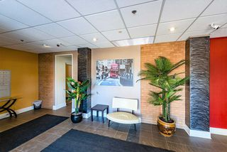 Photo 29: 208 11633 105 Avenue in Edmonton: Zone 08 Condo for sale : MLS®# E4202523