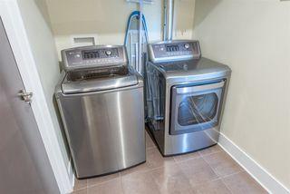 Photo 16: 208 11633 105 Avenue in Edmonton: Zone 08 Condo for sale : MLS®# E4202523