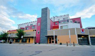 Photo 2: 208 11633 105 Avenue in Edmonton: Zone 08 Condo for sale : MLS®# E4202523