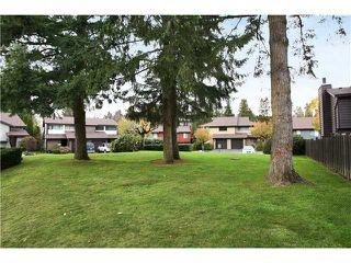 "Photo 6: 3 21550 CHERRINGTON Avenue in Maple Ridge: West Central Townhouse for sale in ""MAPLE RIDGE ESTATES"" : MLS®# V858808"