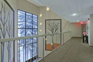 Photo 5: 313 5520 RIVERBEND Road in Edmonton: Zone 14 Condo for sale : MLS®# E4185569