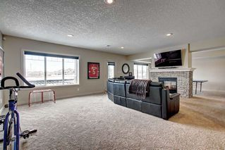 Photo 28: 5012 CEYLON Close: Sherwood Park House for sale : MLS®# E4186854