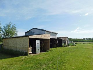 Photo 28: 57 58121 Lily Lake Road: Rural Sturgeon County House for sale : MLS®# E4203420