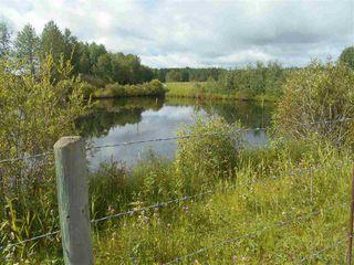 Photo 38: 8324 Hwy 621: Rural Brazeau County House for sale : MLS®# E4208132