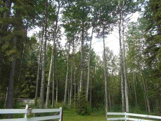 Photo 37: 8324 Hwy 621: Rural Brazeau County House for sale : MLS®# E4208132