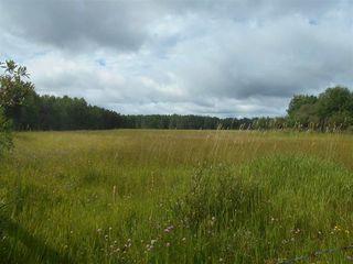 Photo 41: 8324 Hwy 621: Rural Brazeau County House for sale : MLS®# E4208132