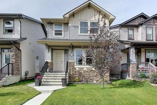 Main Photo: 45 Skyview Springs Crescent NE in Calgary: Skyview Ranch Detached for sale : MLS®# A1022345