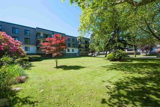 "Photo 15: 215 8880 NO. 1 Road in Richmond: Boyd Park Condo for sale in ""APPLE GREEN PARK"" : MLS®# R2521495"