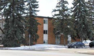 Photo 1:  in Edmonton: Zone 22 Condo for sale : MLS®# E4224438