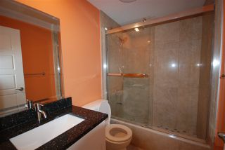 Photo 22: 7599 ELLESMERE Way: Sherwood Park House for sale : MLS®# E4178359