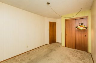 Photo 20: 3807 112A Street in Edmonton: Zone 16 House for sale : MLS®# E4179929