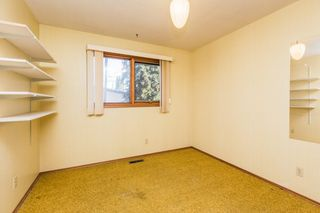 Photo 21: 3807 112A Street in Edmonton: Zone 16 House for sale : MLS®# E4179929