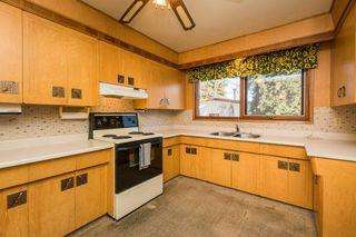 Photo 9: 3807 112A Street in Edmonton: Zone 16 House for sale : MLS®# E4179929