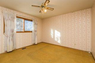 Photo 14: 3807 112A Street in Edmonton: Zone 16 House for sale : MLS®# E4179929